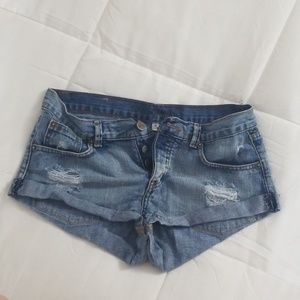 Amuse Society cutoff jean shorts